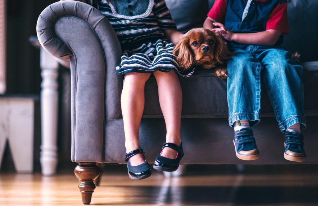 En un sofá están dos niños rodeando a un perro